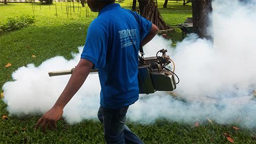 Pest Control Activities Zero Pest